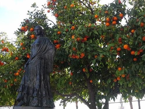 Lee más sobre el artículo Naranjas de Sevilla ( 1ª parte)